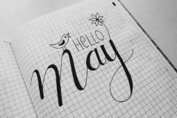white-graphing-paper-with-hello-may-text-1074914